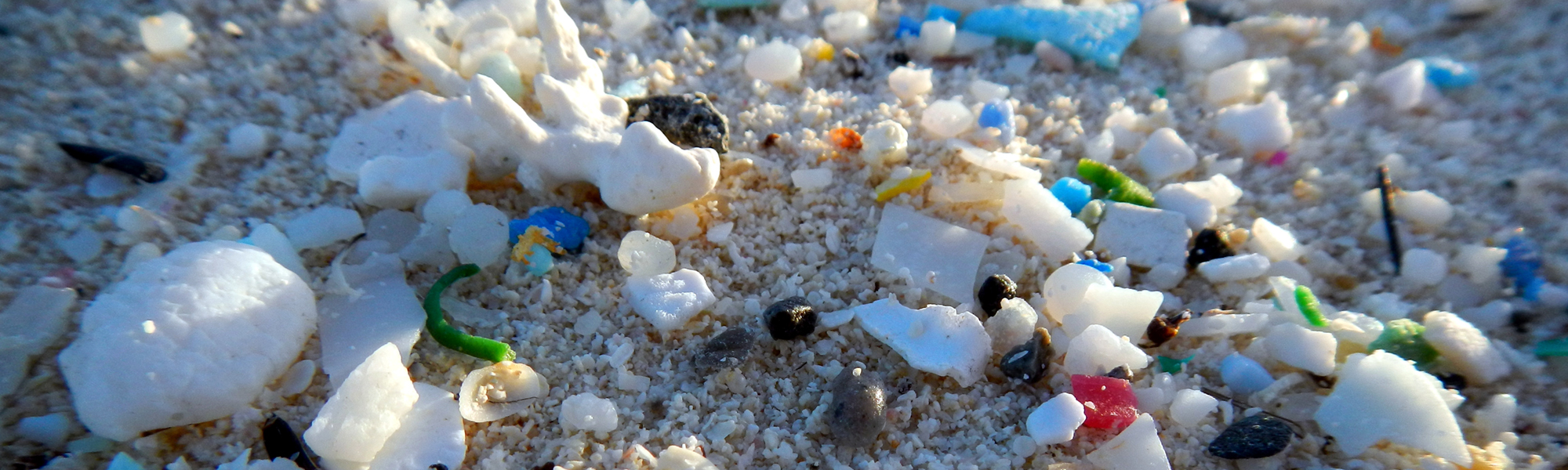 microplastics on a beach